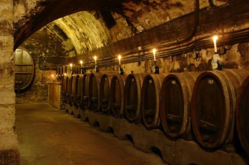 wine cellare wine tasting tour hungary
